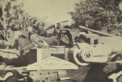 الحرب ال - الحرب العالميه الاولى Normal_00769